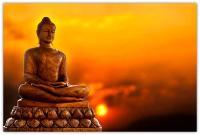 Để Ngộ Tông Chỉ Phật