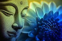 Thuyết Luân Hồi Trong Đạo Phật