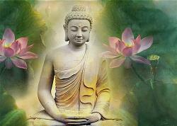 Vài Suy Nghĩ Về Ý Nghĩa Đức Phật Chế Bát Kỉnh Pháp